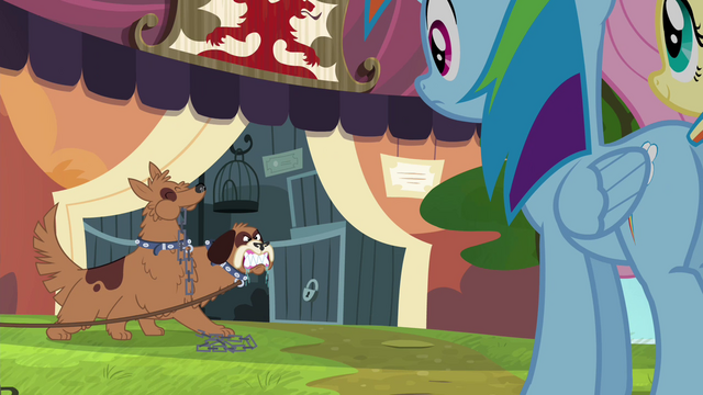 File:Rainbow and Fluttershy approach ancient beast stall S4E22.png