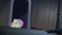 Fluttershy hiding S04E03