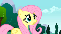 Fluttershy loss of control S01E16
