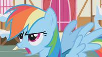 Rainbow calling Ditzy Doo a featherbrain S1E11