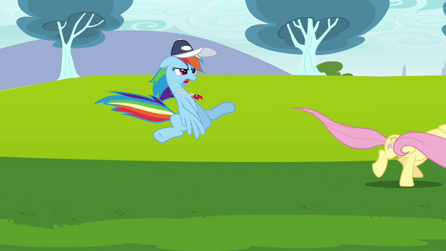 File:Rainbow Dash trying to convince Fluttershy 2 S2E22.png