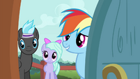 Rainbow Dash asking about the Breezies S4E16