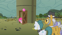 Pinkie Pie at the silo door S1E23