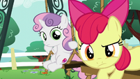 Apple Bloom and Sweetie Belle look at Scootaloo S6E4