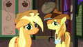 "Applejack ""you really wanna take that chance?"" S5E6.png"