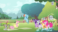 Fluttershy's friends looking at Fluttershy S4E14