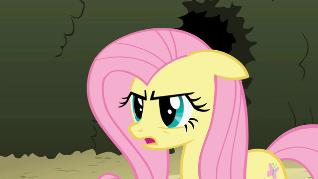 File:Fluttershy 'I can do this' S2E01.png
