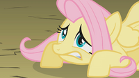 Fluttershy is not so ready S01E07.png