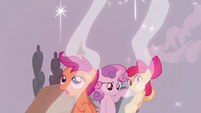 The CMC look at the force field S2E23