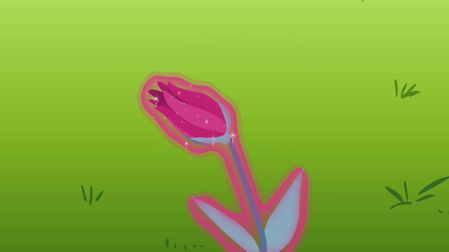 File:The flower is closed S3E05.png