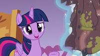 "Twilight Sparkle ""I don't know, Rarity"" S6E22"