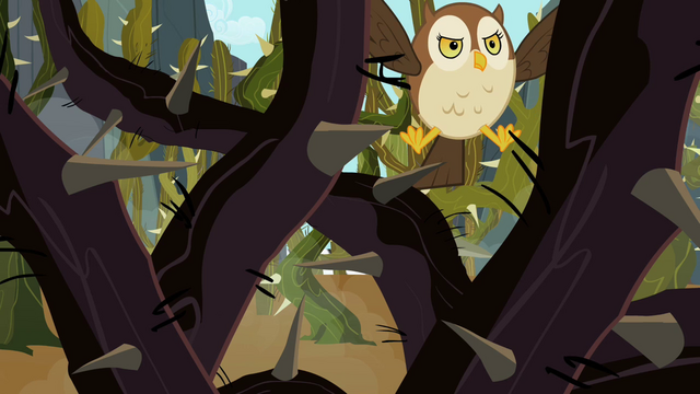 File:Owl can't see a way through the vines S2E07.png