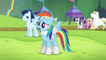 "Rainbow Dash ""I feel great because"" S4E10.png"