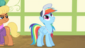 "Rainbow Dash ""the single most important thing"" S4E05.png"