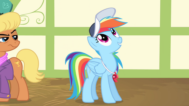 "File:Rainbow Dash ""the single most important thing"" S4E05.png"