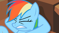 Rainbow Dash angered S2E8