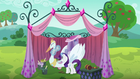Rarity polishing the swan cart S6E14