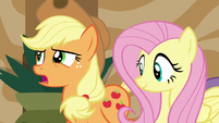 Applejack complains about finding a friendship problem S6E20