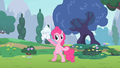 Pinkie Pie ask me S2E13.png