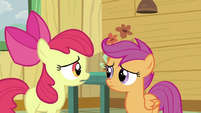 Apple Bloom with Scootaloo S2E23