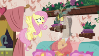Fluttershy tells Discord to stop being normal S7E12