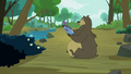 Bear with a fish S3E06.png