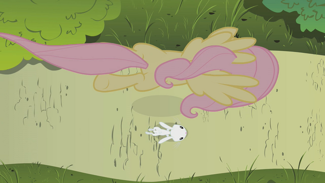 File:Fluttershy flying over Angel S1E7.png