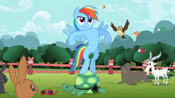 Rainbow Dash 'Agility and guts' S2E7