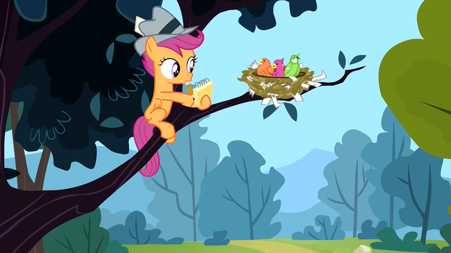 File:Scootaloo and birds S2E23.png