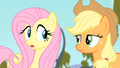 Fluttershy '...are you sure I really need...' S4E07.png