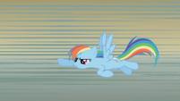 Rainbow flies back toward the stage S1E06