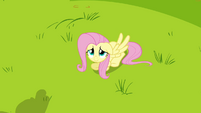 Fluttershy weak smile S2E22