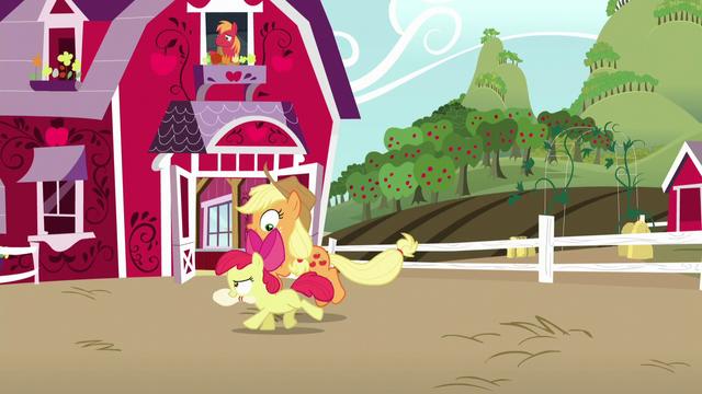 File:Applejack and Apple Bloom having fun together S5E17.png