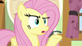 "Fluttershy ""I don't think they meant here"" S6E11.png"