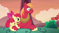 Apple Bloom and Big Mac hear Granny Smith S5E17.png