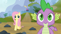 Fluttershy looks at Spike S3E09.png