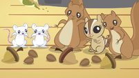 Animals get crunchy acorns S3E13