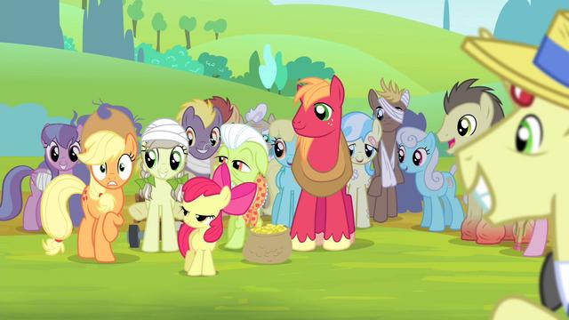 File:Ponies smiling at Applejack S4E20.png