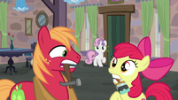 Big McIntosh and Apple Bloom hear Sweetie Belle's warning S7E8