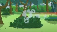 Rainbow Dash runs away too EG3