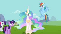 Rainbow Dash skeptical about Celestia and Fluttershy S03E10