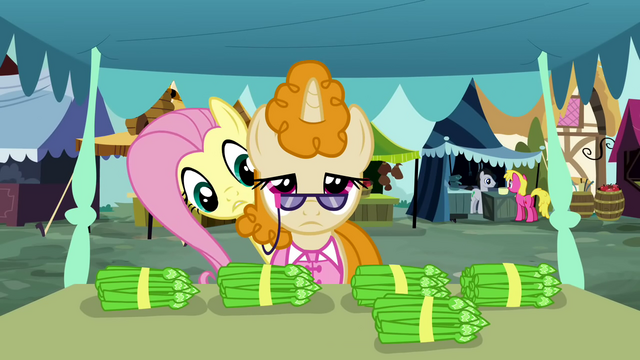 """File:Fluttershy """"Excuse me"""" S2E19.png"""