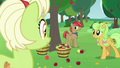 Granny, Goldie Delicious, and Apple family stallion S7E13.png
