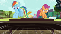 Rainbow and Scootaloo jumping hurdles S5E17.png