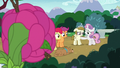 Rarity observes CMC and Zipporwhill from bushes S7E6.png