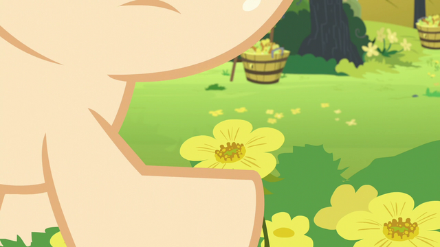 File:Young Pear Butter holding a buttercup S7E13.png