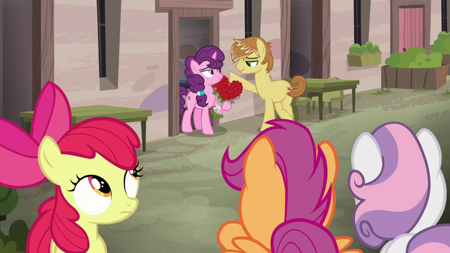 File:Crusaders observe Sugar Belle and Feather Bangs S7E8.png