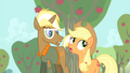 Applejack 'your way is definitely long on style' S4E13.png
