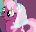 Cheerilee wearing a wedding veil S02E17.png