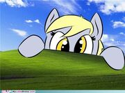 FANMADE My-little-pony-friendship-is-magic-brony-derpy-invades-your-windows large